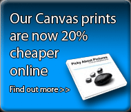 Our canvas prints are now 20% cheaper online. Find out more.