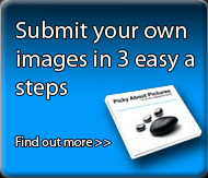 Submit your own picutre in three easy easy steps. Find out more.